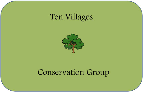 TenVillagesCG Logo