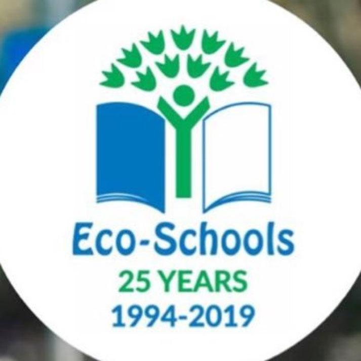 SKelmanthorpe Academy Eco Schools Bronze Award